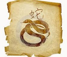 змея год